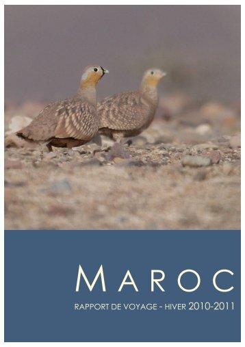 M ARO C - Nos oiseaux