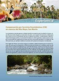 CSE Experiencia Alto Mayo - PDRS