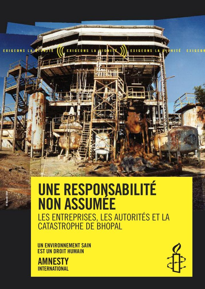 the international and external constraints affecting amnesty international
