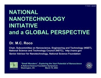 National Nanotechnology Initiative and a Global Perspective