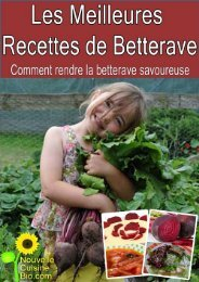 Les meilleures recettes de betterave - Nouvelle cuisine bio