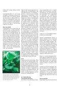 H104 Brahetrolleborg.indd - Naturstyrelsen - Page 6
