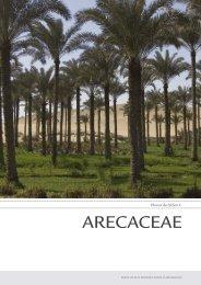 Phoenix Dactylifera L. ARECACEAE - Digital Plant Atlas Project