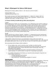 Bilag 4 - miljørapport - Naturstyrelsen