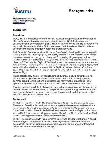Insitu - Social Capital Review
