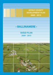 Ballinamere.pdf - Offaly County Council