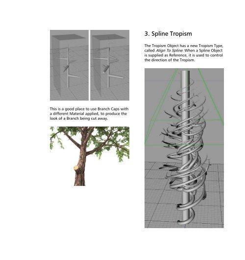 3  Spline Tropism The Tro