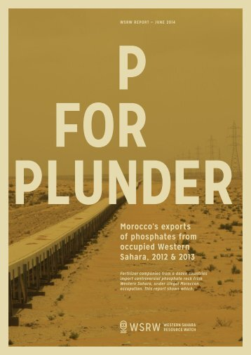 p_for_plunder_2014_web