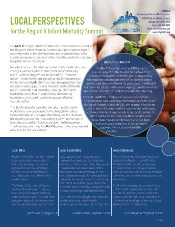 Local Perspectives for the Region V Infant Mortality Summit