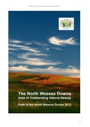 State of the North Wessex Downs Reoprt
