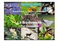 La Biodiversità - PTRC Piano Territoriale Regionale di Coordinamento