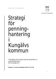 Strategi för penninghantering 2003 - Kungälv