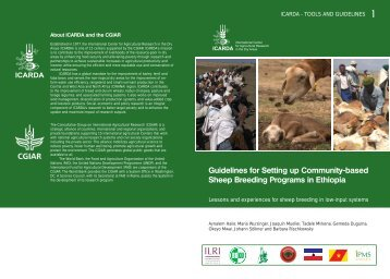 Guidelines for setting up community-based sheep breeding ...