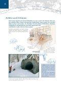 Alte Bäume S. 1-13 - Bayerische Landesanstalt für Wald und ... - Seite 6