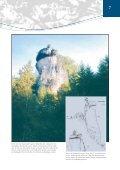 Alte Bäume S. 1-13 - Bayerische Landesanstalt für Wald und ... - Seite 7