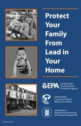 Protect Your Family From Lead in Your Home - Consumer Product ...