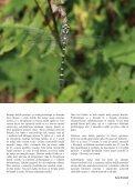 5. številka Novic Notranjskega regijskega parka - Presihajoče ... - Page 5