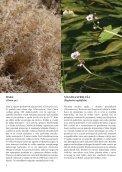 5. številka Novic Notranjskega regijskega parka - Presihajoče ... - Page 6