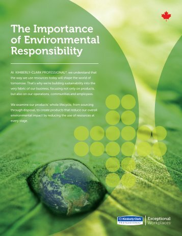 The Importance of Environmental Responsibility
