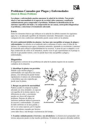 Problemas de plagas y enfermedades - ISA Hispana