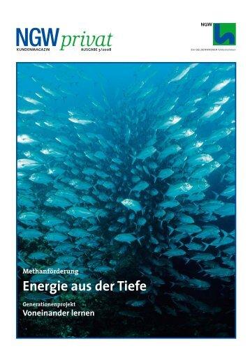 energie aus der Tiefe - ngw