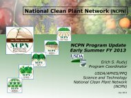 National Clean Plant Network (NCPN)