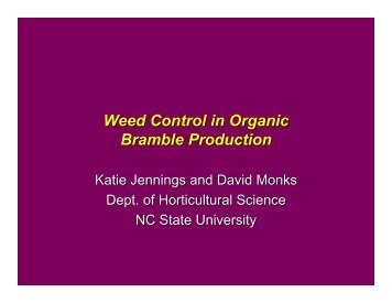 Weed Control in Organic Bramble Production