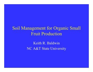 Soil Management for Organic Small Fruit Production