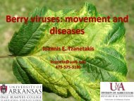 Berry viruses - The Southern Region Small Fruit Consortium