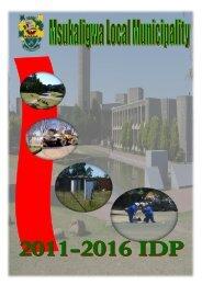 Msukaligwa Local Municipality - Co-operative Governance and ...