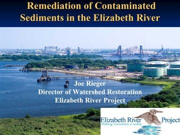 Remediation of Contaminated Sediments in the Elizabeth River