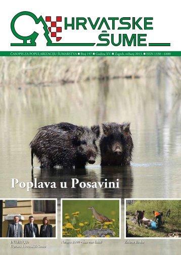 HRVATSKE ŠUME 197 - 5/2013