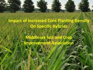 Impact of Increased Corn Plan.ng Density On Specific Hybrids ...