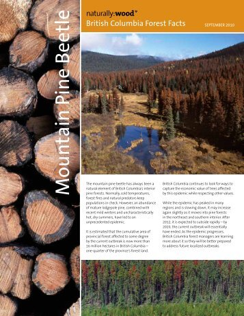 Mountain Pine Beetle - Naturally:wood