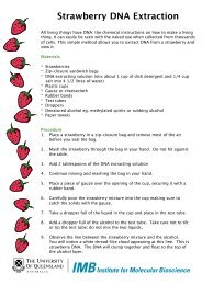 Download strawberry DNA extraction pdf