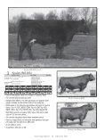 BULL SALE - Angus Journal - Page 6