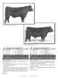 BULL SALE - Angus Journal - Page 7