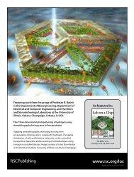 x 136mm - Laboratory of Integrated Bio Medical Micro ...