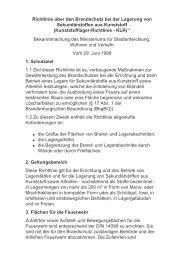 Richtlinie Kunstofflager.pdf