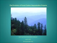 The Evolution of Forest Carbon Sequestration Projects