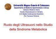 Ruolo degli Ultrasuoni nello Studio della Sindrome Metabolica