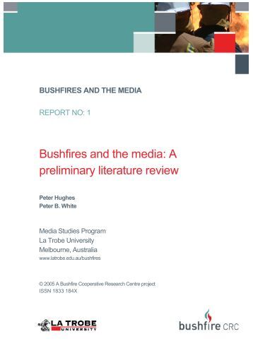 Preliminary literature review example