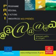 PRAI TIC (format PDF, 1.1 Mo) - Région Midi-Pyrénées