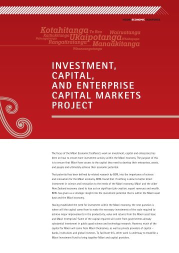 Investment, Capital, and Enterprise Capital Markets Project [PDF ...