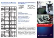 den Folder als pdf-Datei zum ausdrucken laden - 368 KB