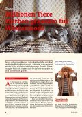 Heft 3 / 2013 - Tierschutz: Pro Tier - Page 4