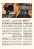 Heft 3 / 2013 - Tierschutz: Pro Tier - Page 6