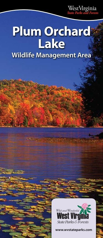 Plum Orchard Lake WMA - West Virginia State Parks