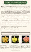 Carter and Holmes Orchids - Carter & Holmes Orchids - Page 2