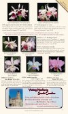 Carter and Holmes Orchids - Carter & Holmes Orchids - Page 7